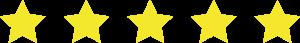 5 estrellas en Google Business